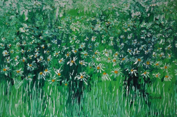 Leucanthemum in grass 3 - Image 0