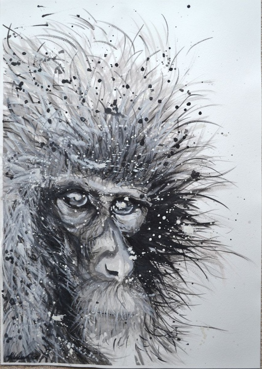 Japanese Macaque - Large 42 x 60 cm ( A2 ) - Image 0