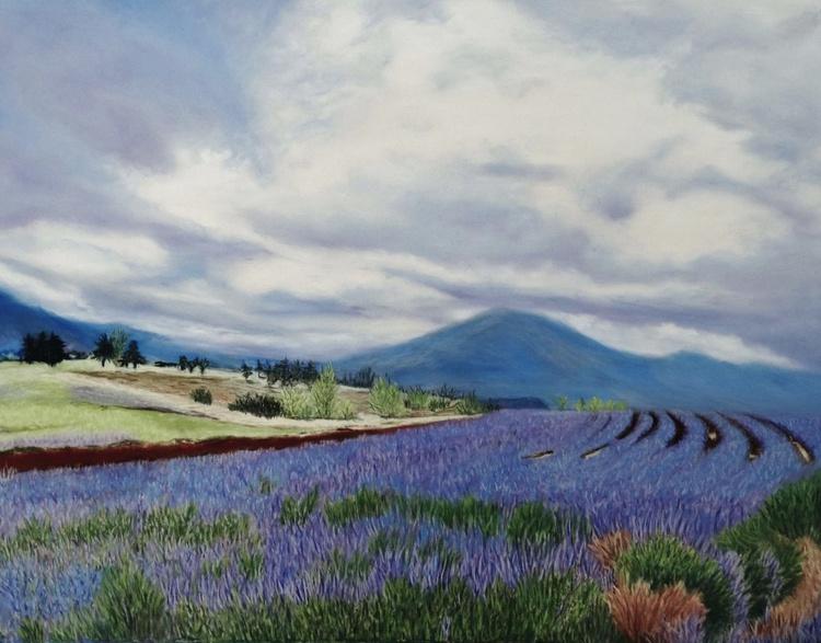 Lavender Fields Forever - Image 0