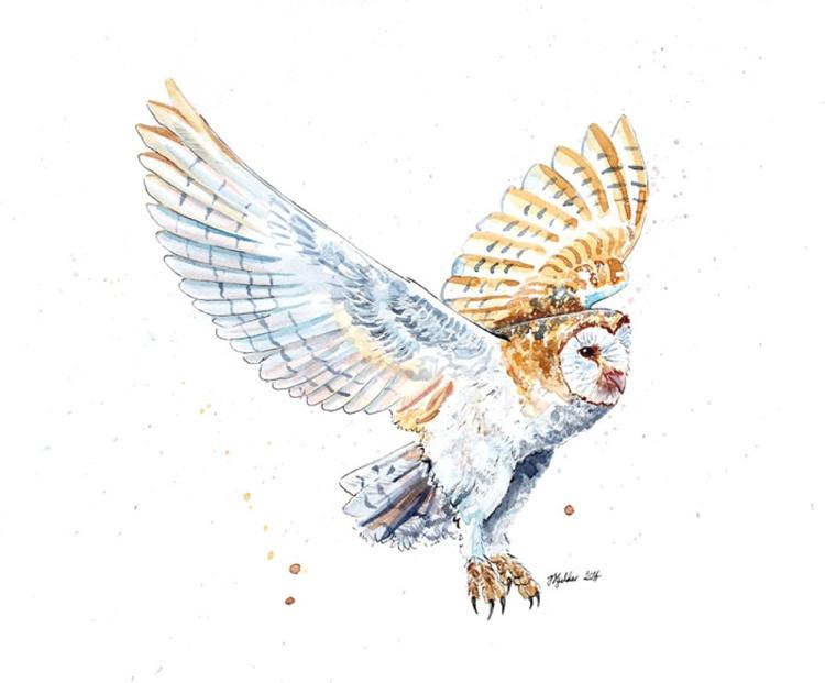 """Breeze"" Original Barn Owl Painting - Image 0"
