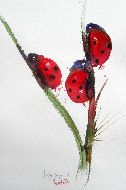 Ladybirds 1 - Image 0