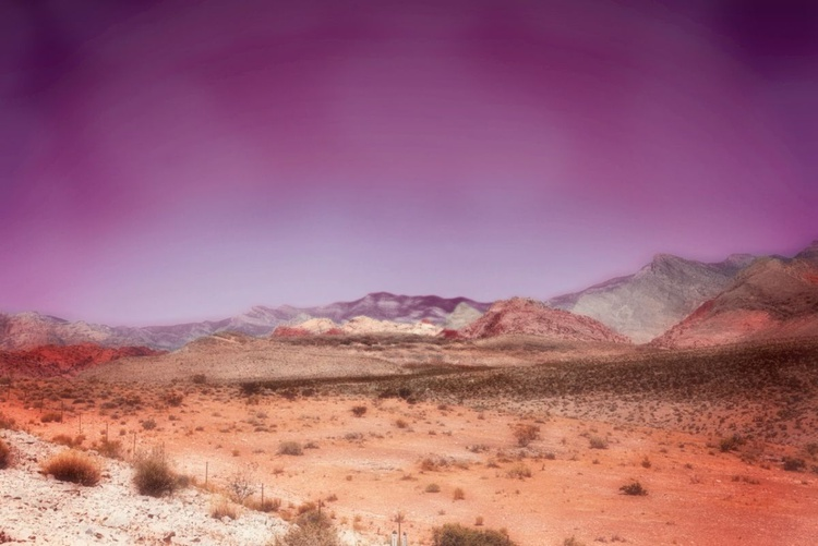 Desert Dream - Image 0