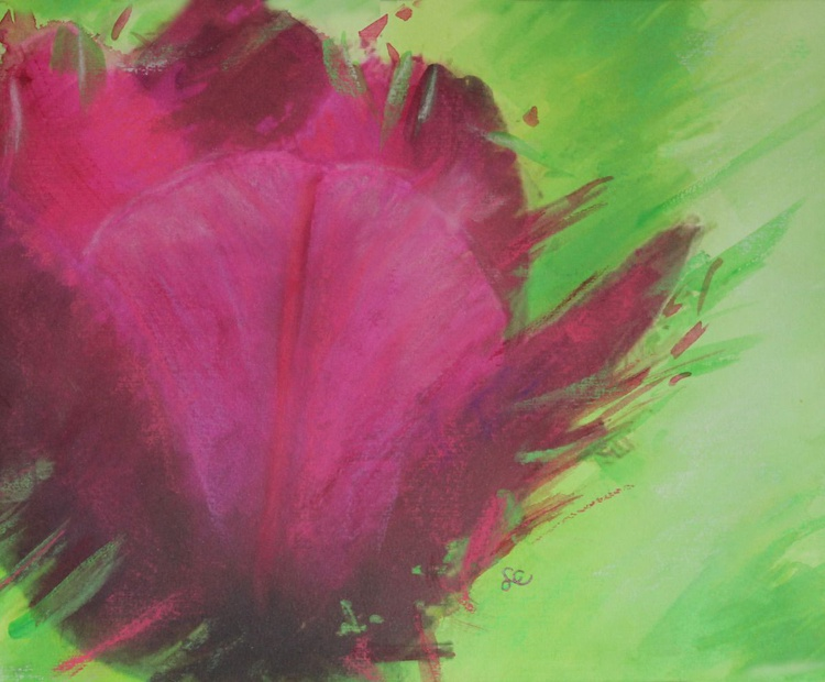 Cerise Tulip - Image 0
