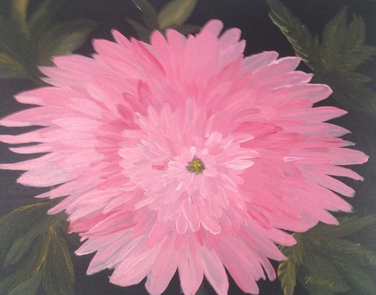 Midnight Pink Mum - Image 0