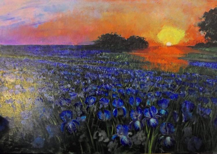 Summer Sunset Over the Iris Field - Image 0