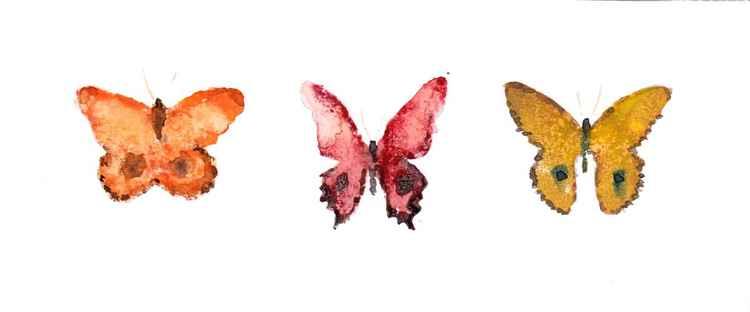 Three Butterflies 219ORY1 -