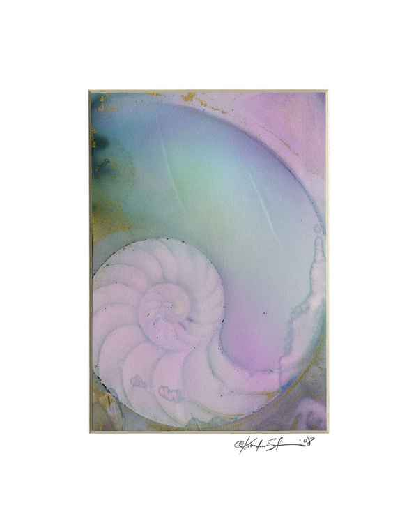Sea Shell Watercolor Painting, Ocean - Nautilus Shell No. 928