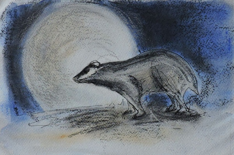 Badger's Moon - Image 0
