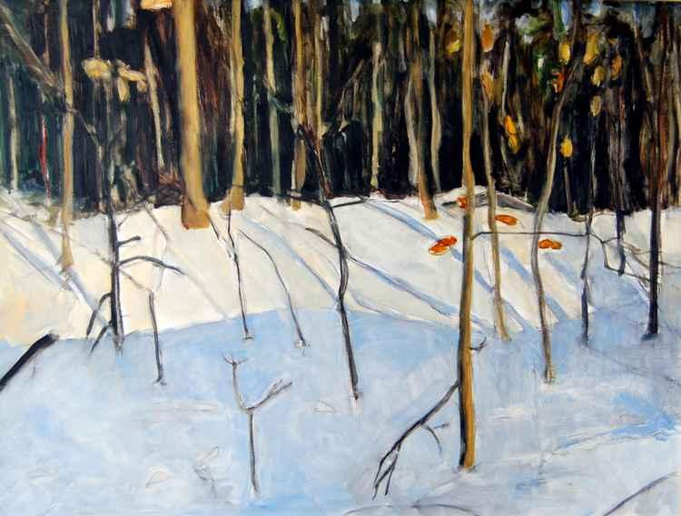 Smith Woods Winter -