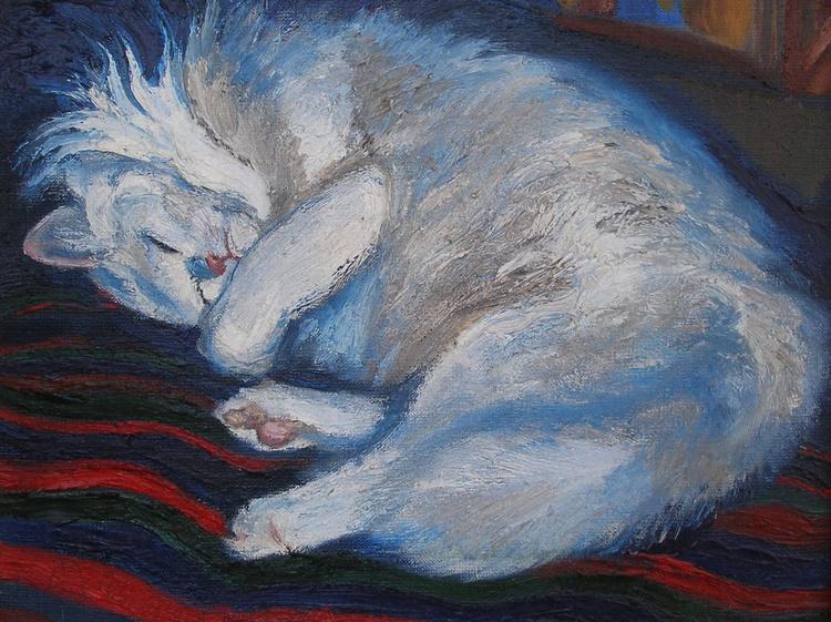 White cat sleeps - Image 0