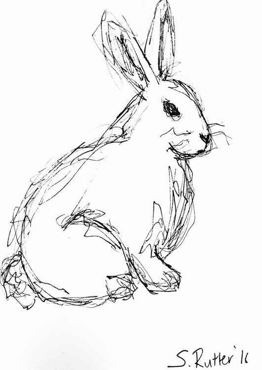 Rabbit -