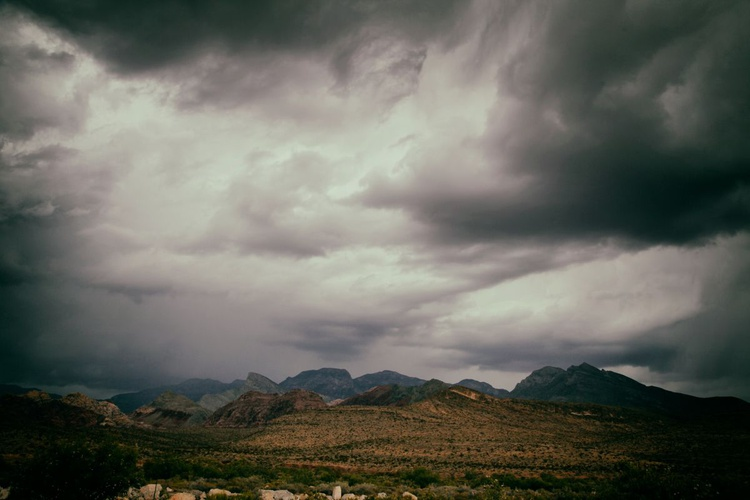 In A Desert Storm ... - Image 0