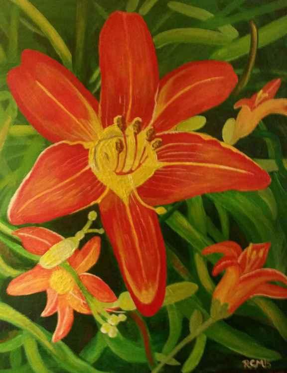 Orange Lilies Burst