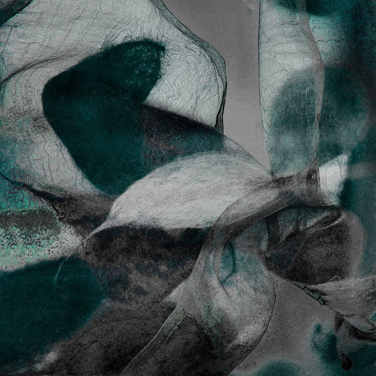 Soft And Delicate - Monoprint - Image 0