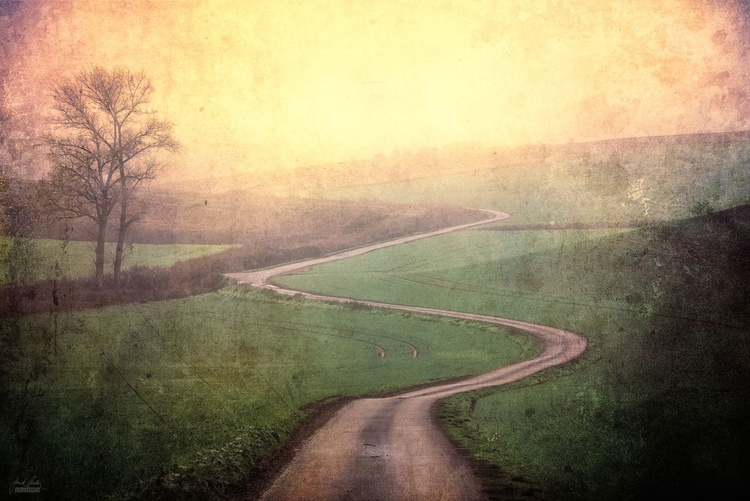 Road to the Home - Image 0