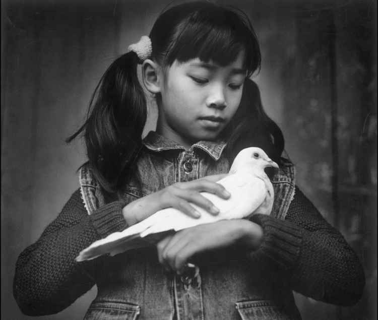 Girl with a Dove : China.