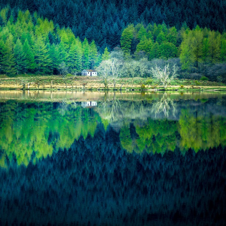 Tranquility, Loch Eck - Image 0