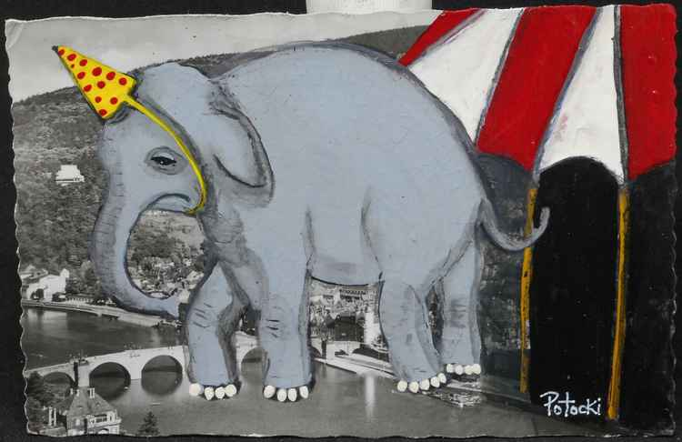 The Elephant Hated the Circus -