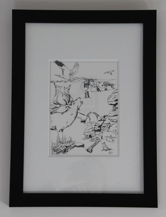 Moorland Animals - Image 0