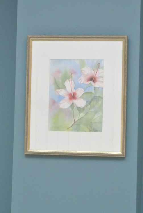 Pink Hibiscus - Original watercolour, framed and ready to hang