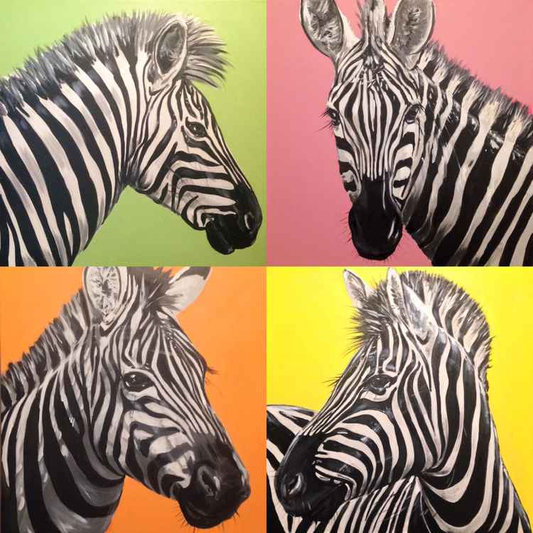 A dazzle of zebra -