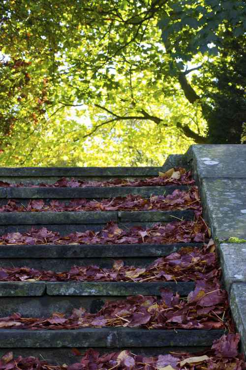 AUTUMN STAIRCASE -