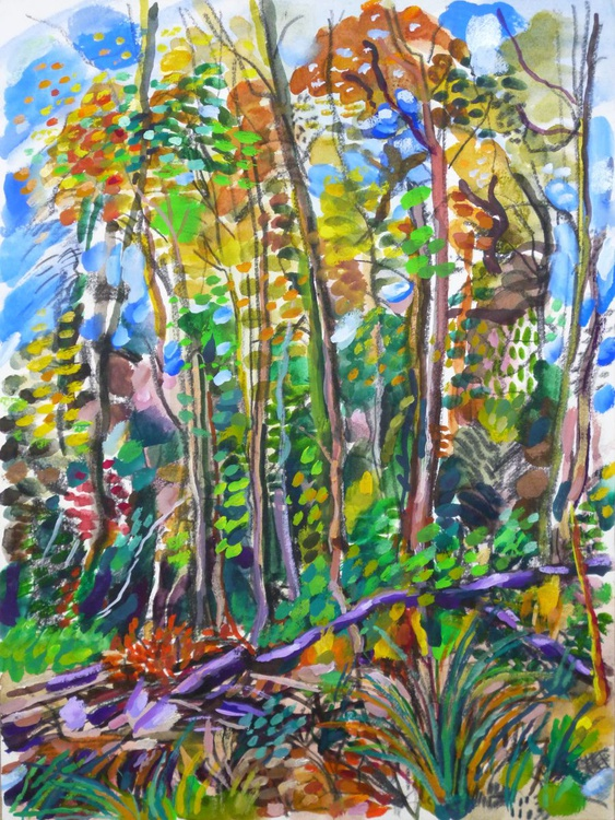 Autumn Forest, Bluebell wood, Berkshire, 2013 - Image 0