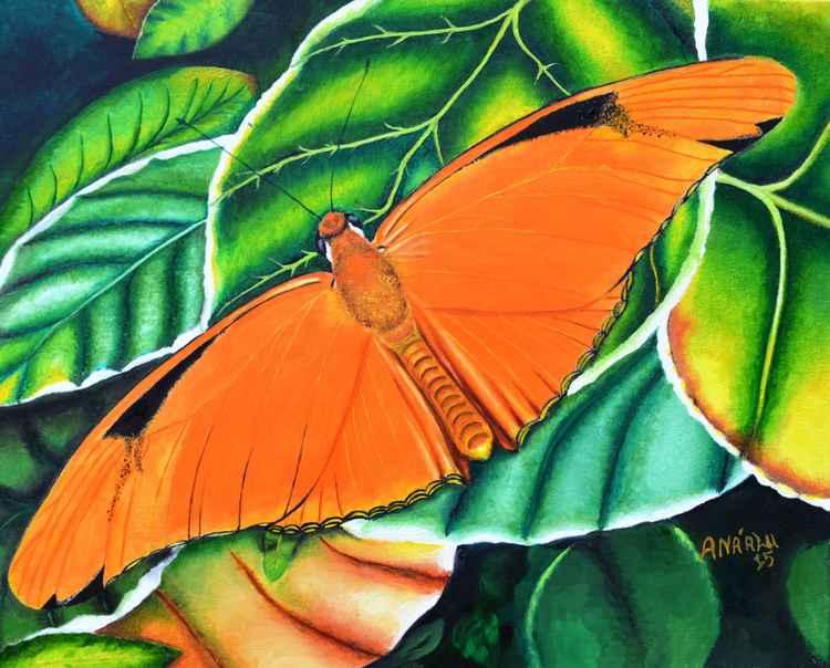 Orange Butterfly On Green Fauna