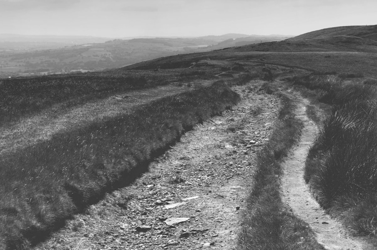 Roads Less Travelled - Unmounted - Image 0
