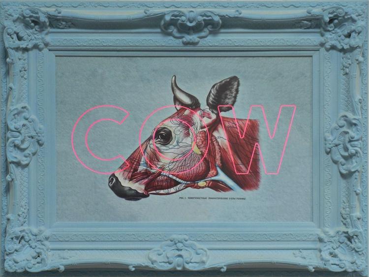 Cow - Image 0