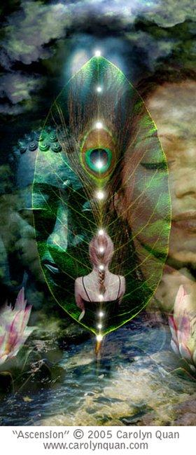 Ascension by Carolyn Quan