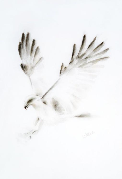 Monochrome Bird of Prey - Image 0