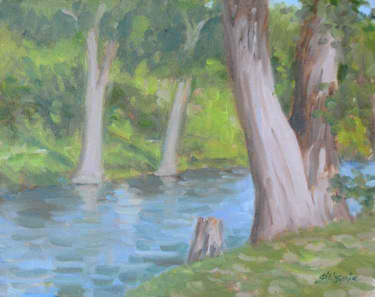 Cypresses on the Guadalupe -