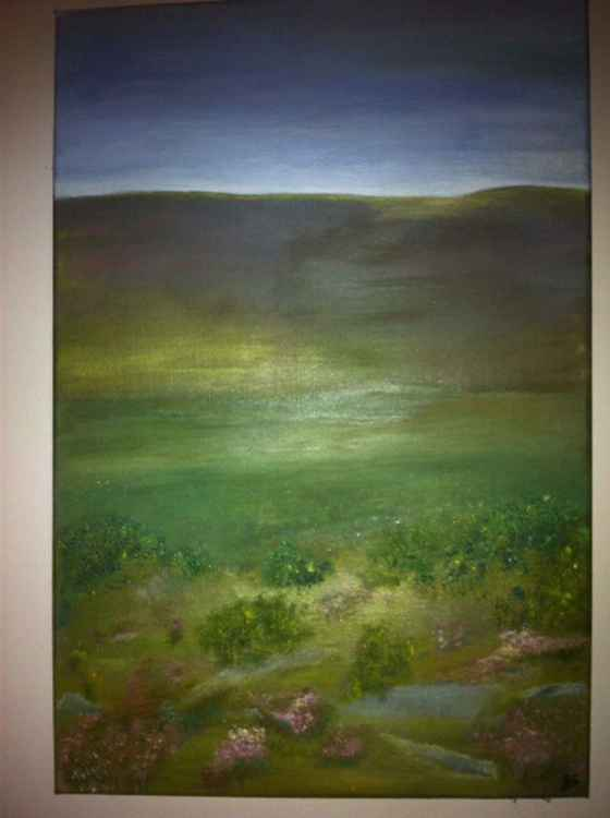 Dartmoor Dreaming -