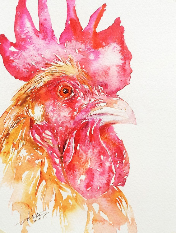 Red Ross Rooster - Image 0
