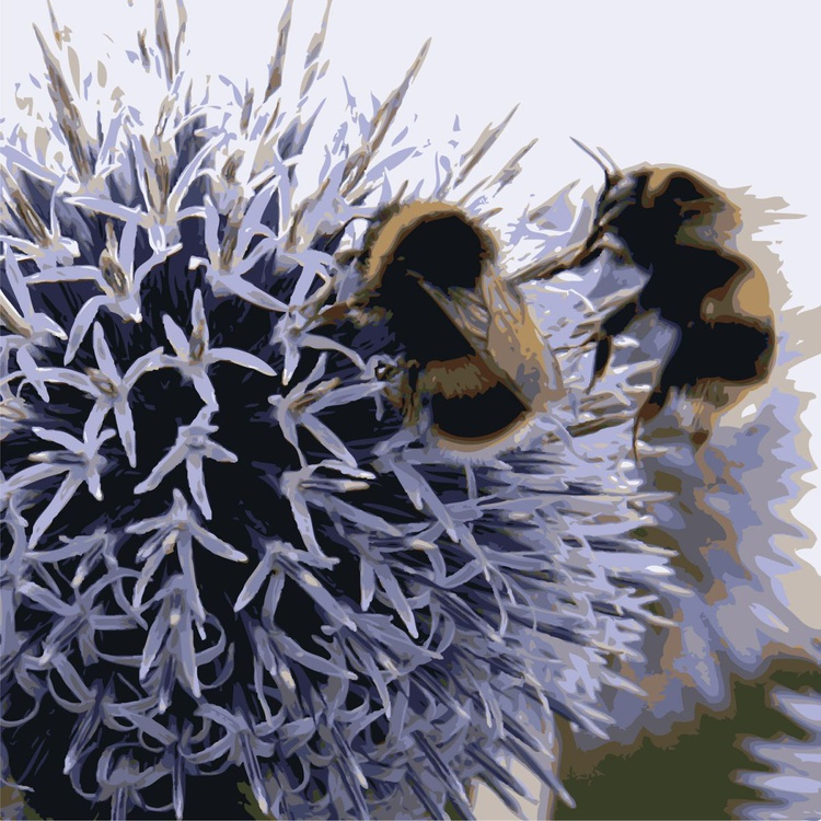 BEES #2 - Image 0
