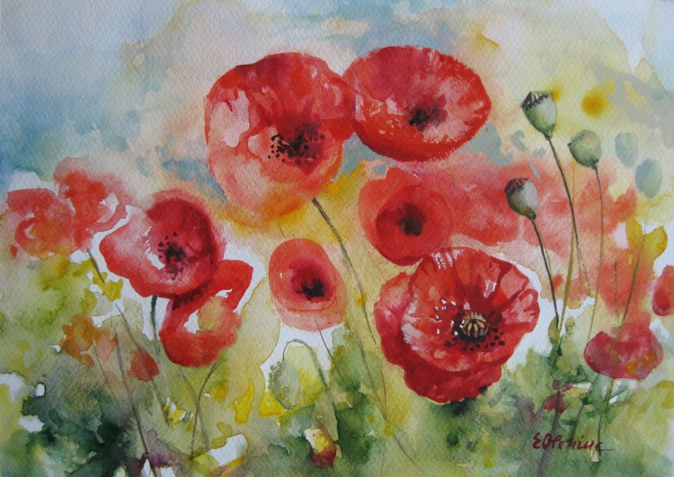Red poppies field - Image 0