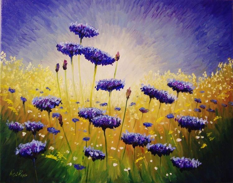 Cornflowers in the sun 3 [17/9] - Image 0