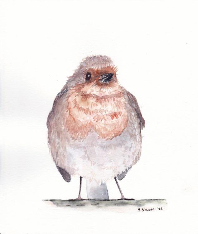 Watercolour birds portraits series. Robin Birds. Wolfgang - Image 0