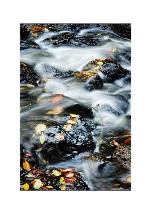 Flow -