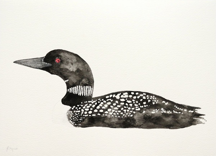 The great northern loon (Gavia immer) - Image 0