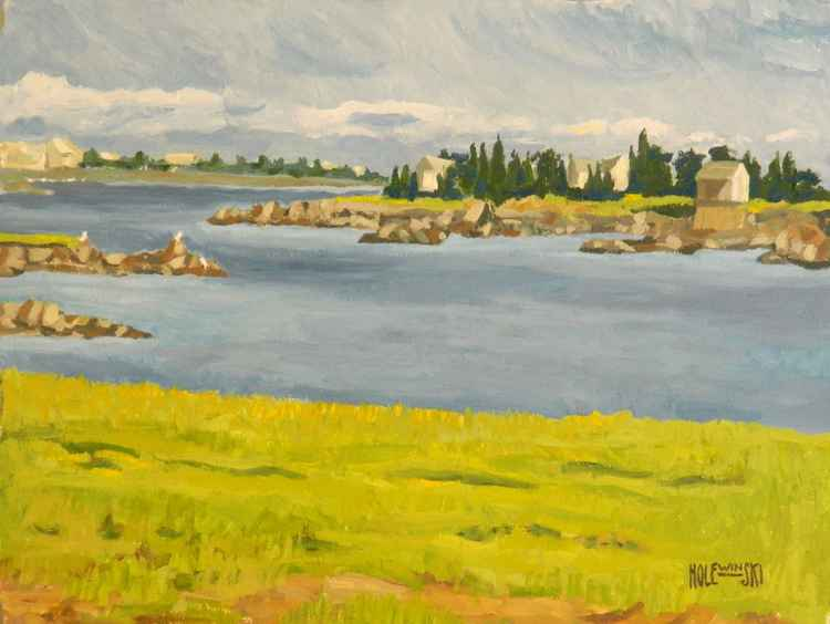 Tidal Coast Marsh -