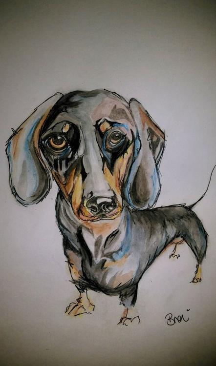 Dachshund Dog Doodle Watercolour - Image 0