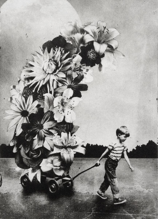 The Boy and The Flowers - Image 0