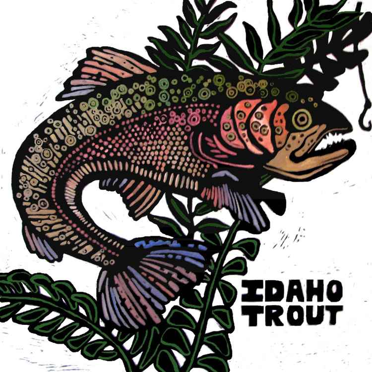 IDAHO TROUT -