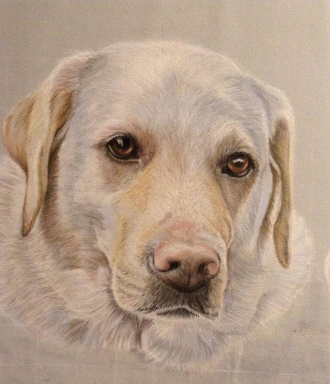 Personalised Pastel Pet Portraits - Image 0