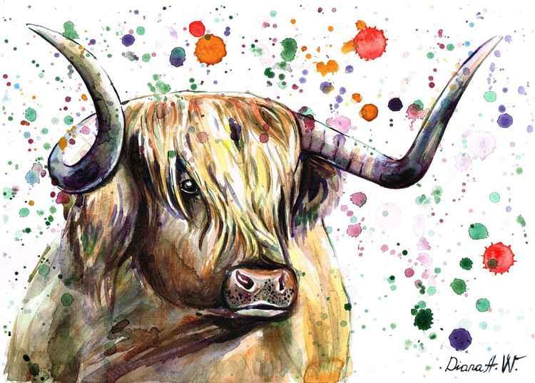 Handsome Highland Cow -