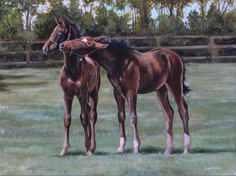 Foal play -