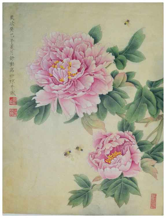 Pink Peony with breaths of fragrance Original Chinese Gongbi Painting by Qin Shu