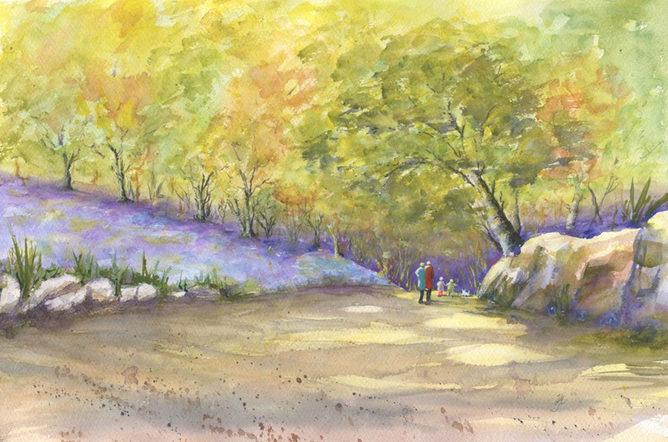 The Bluebell Wood - Image 0